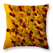 Then Comes The Seed Throw Pillow