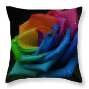 Then There Was Rain Throw Pillow