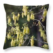 There Back Throw Pillow