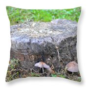 There Is A Fungus Among Us Throw Pillow