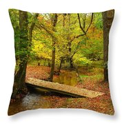 There Is Peace - Allaire State Park Throw Pillow