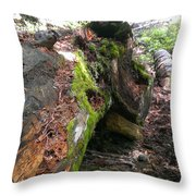 There Is Still Life Throw Pillow