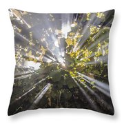 Therefrom Throw Pillow