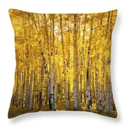 There's Gold In Them Woods  Throw Pillow