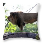 Theres Nothing Like A Good Roar To Start The Morning Throw Pillow