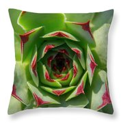 Thick Lashes Throw Pillow