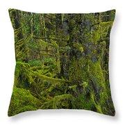 Thick Rainforest Throw Pillow
