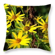 Thin-leaved Sunflower Throw Pillow