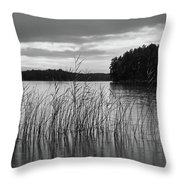 Thin Rain In The Evening Throw Pillow