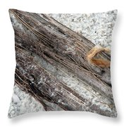 Things On The Beach Throw Pillow