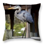 Thinking About Lunch Throw Pillow