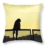 Thinking Monkey Throw Pillow