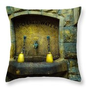 Thirst For Knowledge Throw Pillow