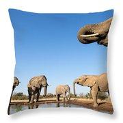 Thirsty Elephants Throw Pillow