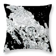 Thirsty Throw Pillow by Molly McPherson