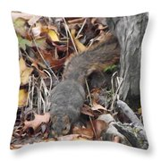 Thirsty Squirrel Throw Pillow