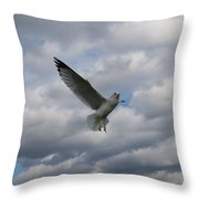 This Is Fun Throw Pillow