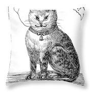 This Is My Book, Miau-u-u, 1859 Throw Pillow