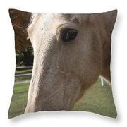 This Is My Good Side Throw Pillow