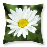 This Is Spring Throw Pillow