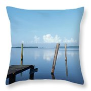 This Is The Morning View Of Pine Island Throw Pillow