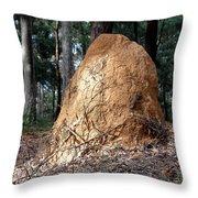 This Mound Has Termites Throw Pillow