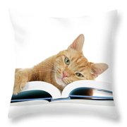 This Tabby Cat Loves Books  Throw Pillow