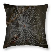 This Way My Pretty . . . Throw Pillow