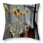 Thistle And Wood Throw Pillow