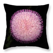 Thistle Bloom At Night Throw Pillow