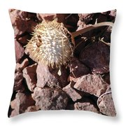 Thistle Fractures Throw Pillow
