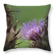 Thistle In Hiding Throw Pillow