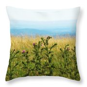 Thistle On The Blue Ridge Throw Pillow