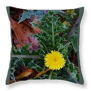 Thistle This Throw Pillow