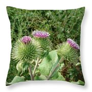 Thistle Trinity Throw Pillow