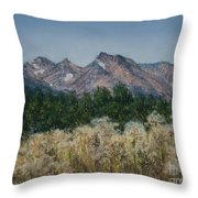 Thistledown In The Valley Throw Pillow