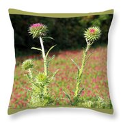 Thistles In A Field Of Clover Throw Pillow