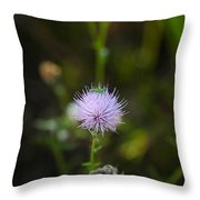 Thistles Morning Dew Throw Pillow