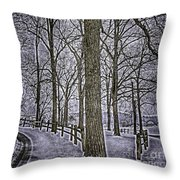 Thompson Lake Hdr  Throw Pillow