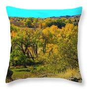 Thompson Valley Overlook Throw Pillow
