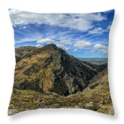 Thomson Gorge Throw Pillow