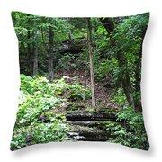 Thorncrown Chapel Setting In The Ozark Mountains Throw Pillow
