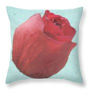 Thornless Throw Pillow