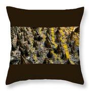 Thorns Of Silk Throw Pillow