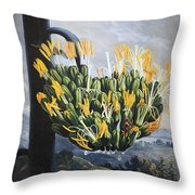 Thornton: Aloe Throw Pillow