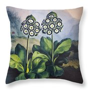 Thornton: Auriculas Throw Pillow