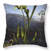 Thornton: Bog Plants Throw Pillow