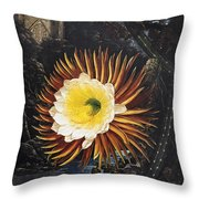 Thornton: Cereus Throw Pillow
