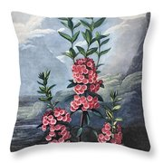Thornton: Kalmia Throw Pillow