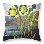 Thornton: Pitcher Plant Throw Pillow